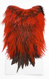 Bild på Keough Saltwater Tuppsadlar Badger - Red