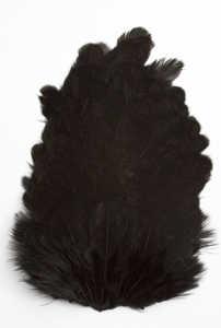 Bild på Soft Hackel (hönssadel) Black