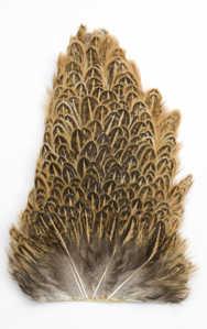 Bild på Soft Hackel (hönssadel) Ginger
