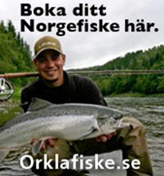 Bild på Hosted Tripp Orkla
