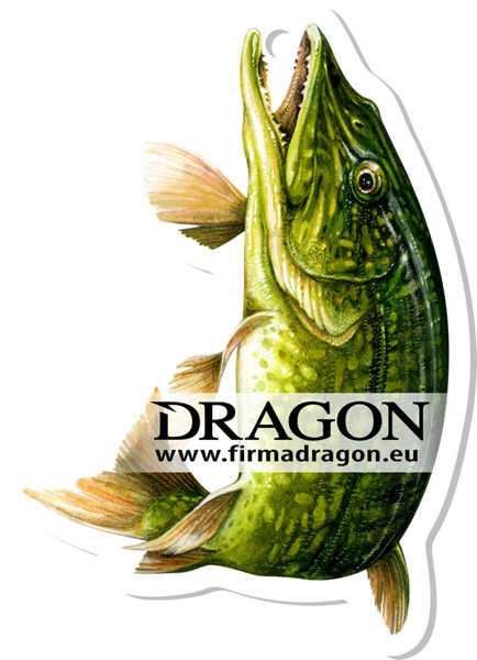 Bild på Dragon Wonderfish Pike