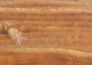 Bild på Standard Chenille Medium (4mm) Ginger