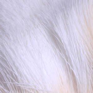 Bild på Hjorthår/Deerhair White