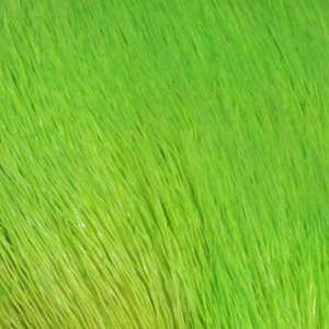 Bild på Hjorthår/Deerhair Chartreuse