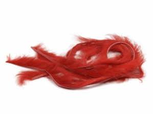 Bild på Kanin Zonker (2mm) Red