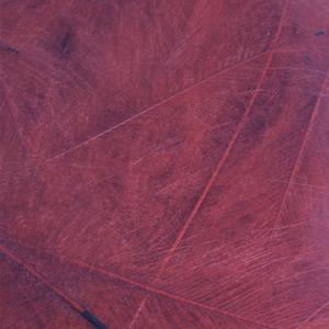 Bild på CDC Marc Petitjean (1 gram) Red