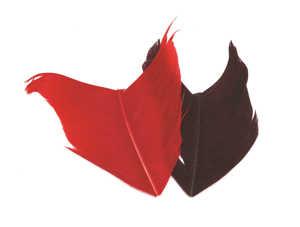 Bild på Condor Substitut (kalkon) Dark Claret