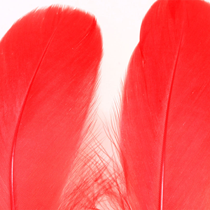 Bild på Gås Skulderfjäder / Goose Shoulder Red