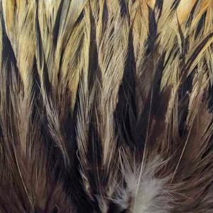 Bild på Tupphackel Badger Natural