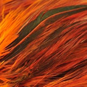 Bild på Tupphackel Badger Burnt Orange