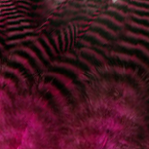 Bild på Tupphackel Grizzly Pink