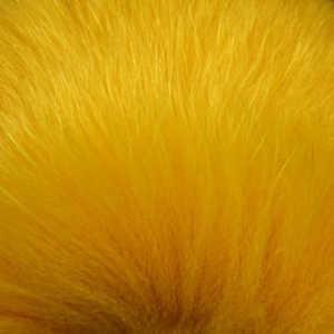 Bild på Shadow Fox Yellow Gold