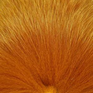 Bild på Shadow Fox Honey Gold