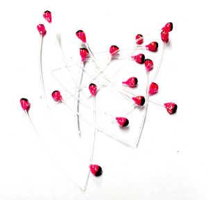 Bild på Schrimp Eyes (Fler färger) Pink
