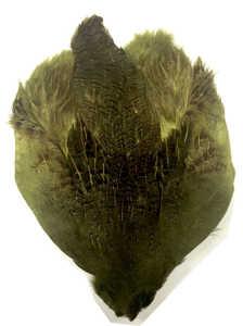 Bild på Rapphöna Hungarian (Helt skinn) Olive