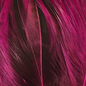 Bild på Tupphackel Badger Fluo Pink