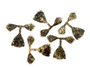 Bild på Kiley's Fish Finz Mottled Black (Medium)