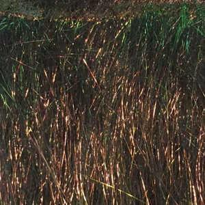 Bild på Ice dub Shimmer Fringe - Black Pearl