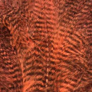 Bild på Marabou Fine Barred Feathers Fluo Shell Pink