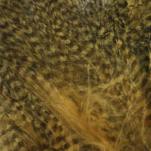 Bild på Marabou Fine Barred Feathers Wood Duck Gold
