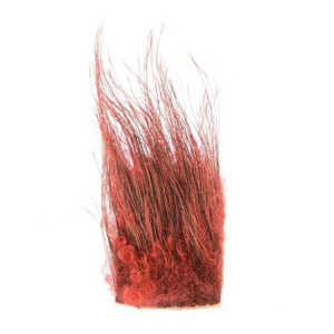 Bild på Wild Boar Hair (Vildsvin) Red