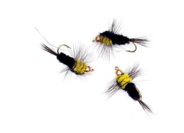 Bild på Montana Yellow m guldskalle #8