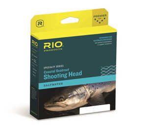 Bild på Rio Coastal Seatrout Shooting Head Hover #5/6