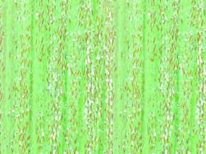 Bild på SSS Braid Hot Greenlander Green
