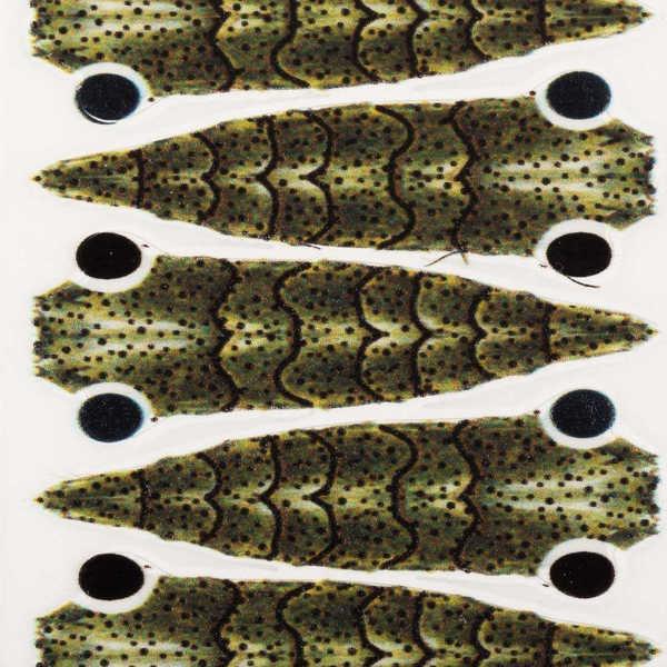 Bild på Pro GEN2 Shrimp Brown/Olive