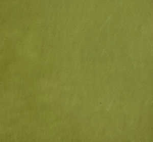 Bild på Fly-Rite Poly II Dubbing Material Pale Watery Olive