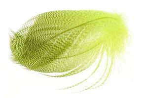 Bild på Grey Mallard Flank  Fluo Yellow