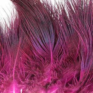 Bild på Ringfasan Rumphackel Fluo Pink