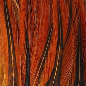 Bild på Tupphackel Badger Ginger
