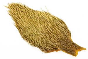 Bild på Ewing Tuppnacke Bleached Golden Olive