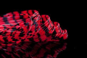 Bild på A.Jensen Grizzly Crazy Legs Red/Black
