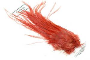 Bild på Ewing Wolly Bugger Pack Ginger
