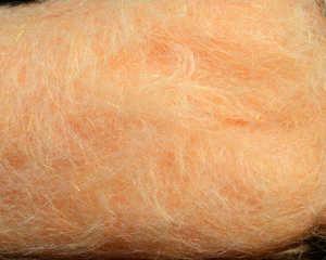 Bild på Spawns Simi Seal Dubbing Pete's Shrimp Peach